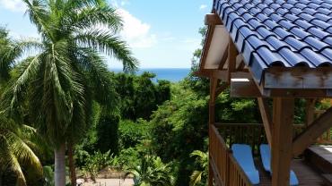 Vue sur le parc tropical